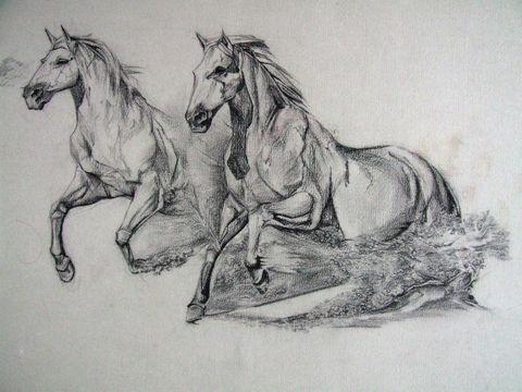 Disegni Artistici Cavalli Pittori E Quadri
